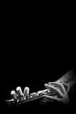 与手音乐会的长笛特写镜头 免版税库存图片