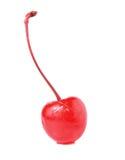 糖渍的樱桃 库存照片