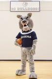 Μασκότ γυμνασίου για το ομάδα μπάσκετ Στοκ εικόνα με δικαίωμα ελεύθερης χρήσης