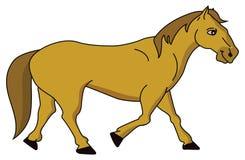 马 向量例证