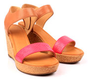 妇女鞋子 免版税库存照片