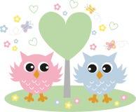 在爱的两头甜猫头鹰 免版税库存图片