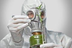 Ο επιστήμονας βάζει τις πράσινες εγκαταστάσεις στη φιάλη Στοκ Εικόνα