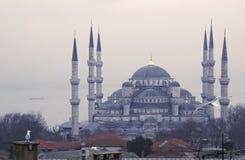 蓝色伊斯坦布尔清真寺 免版税图库摄影
