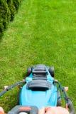 绿草是被割的割草机 免版税图库摄影