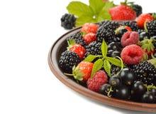 ягоды различные Стоковое Изображение