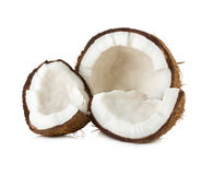 在白色隔绝的椰子 库存图片