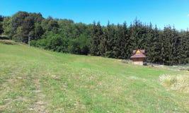 原木小屋和自然 免版税库存图片