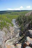 Идущее река Стоковая Фотография RF