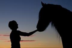 剪影女孩和马 免版税库存照片