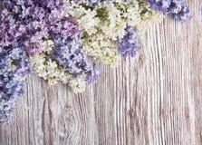 在木背景,在葡萄酒木头的开花分支的淡紫色花 免版税库存图片