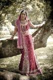 站立在树下的年轻美丽的印地安印度新娘 免版税库存照片