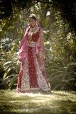 站立在树下的年轻美丽的印地安印度新娘 免版税库存图片