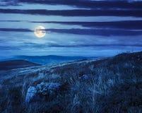 在山坡的石头在晚上 免版税库存照片