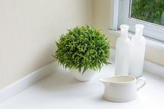 有瓶和装饰植物的一个水罐 库存图片