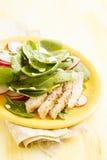 Πράσινη σαλάτα με το σπανάκι της Τουρκίας και μωρών Στοκ Εικόνα