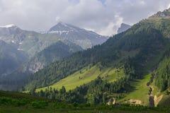 свертывать зеленых холмов Стоковые Изображения
