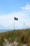 вектор типа пирата имеющегося флага стеклянный Стоковые Изображения