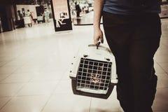 猫被关闭的里面宠物载体在机场 免版税库存图片