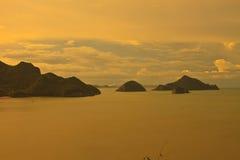 在热带海岛横向长的春天的夏天里面的 横幅 动画片水平