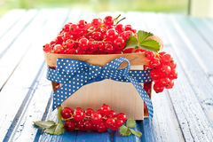 Корзина с свежими красными смородинами Стоковое Фото