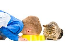 男孩吃一个碗猫 免版税库存图片