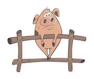 свинья шарж Стоковая Фотография