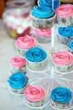 桃红色和蓝色杯形蛋糕 库存照片