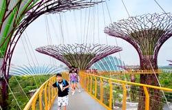 滨海湾公园游览 免版税库存图片