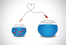 逃脱从拥挤小玻璃碗的机敏的鱼苗到大 库存照片