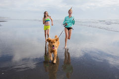 遛两个的女孩在海滩的一条狗 免版税库存照片