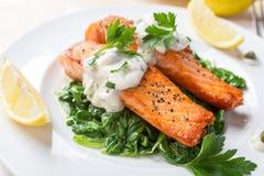 在菠菜床上的健康鲑鱼排  库存图片