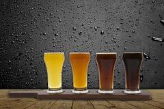 Πτήση μπύρας Στοκ Εικόνες