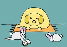 宠物肥胖病 库存照片