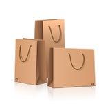 Комплект индивидуальных бумажных пакетов с отражением Стоковое Изображение