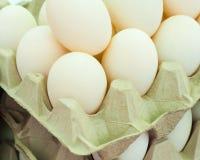 自由放养的鸭子鸡蛋 免版税图库摄影
