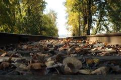 接近的日排行铁轨二 免版税图库摄影