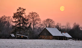 Холодное утро Стоковые Фото