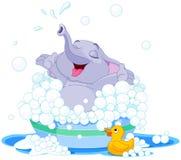 逗人喜爱的大象 免版税库存图片