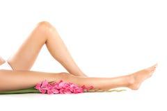 在白色背景的健康女性腿 免版税库存照片