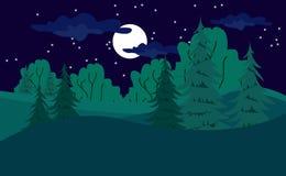在夜间的森林视图 图库摄影