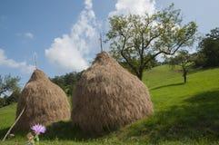 干草传统罗马尼亚的栈 免版税库存照片