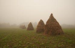干草堆和雾 免版税库存图片