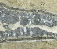 锌和铅矿富有的静脉  免版税库存图片