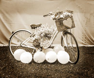 Ποδήλατο με τα λουλούδια, σέπια έννοιας Στοκ Εικόνες