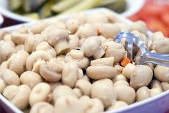 σαλάτα μανιταριών Στοκ φωτογραφία με δικαίωμα ελεύθερης χρήσης