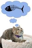 Думая котенок Стоковые Фотографии RF