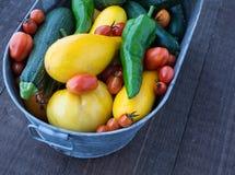 新鲜的被采摘的家庭菜园菜 免版税库存图片