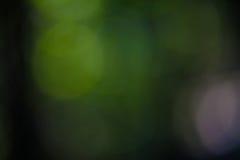Σκούρο πράσινο και μαύρη αφηρημένη θαμπάδα υποβάθρου Στοκ Εικόνα