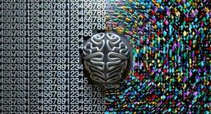 Концепция левого и правого мозга Стоковые Изображения RF
